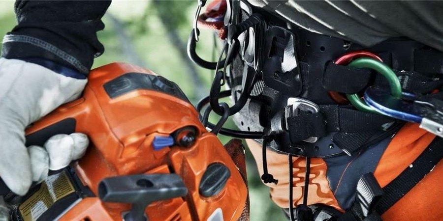 Sistema de sujeción para motosierras de poda