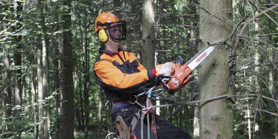 Trabajos forestales con la motosierra de poda ligera Echo CS-280TES